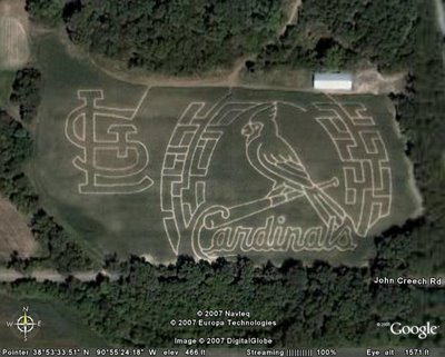 Cardinals Baseball Field Illusion
