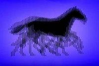 Magic Moving Pictures Animated Illusion
