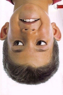 Upside Down Optical Illusion Again