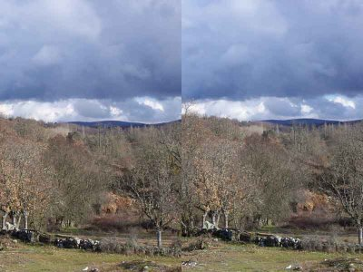More Stereograms   Andys Collection