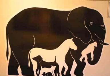 Animal Shadows Optical Illusion