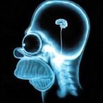 Brain Is a Genius? Isnt it?
