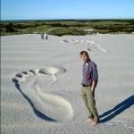 Big Foot Optical Illusion