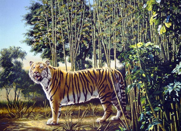 Hidden-Tiger-Optical-Illusion.jpg