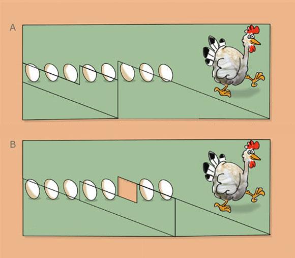 Magic Eggs Optical Illusion