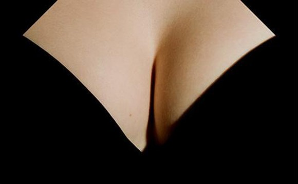 Optical Illusion: Get Your Mind Out Of the Gutter