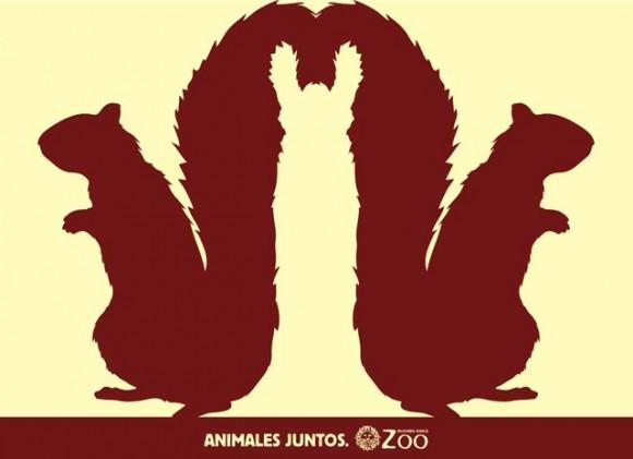 Argentina Zoo animals optical illusions 7