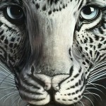 Leopard Optical Illusion