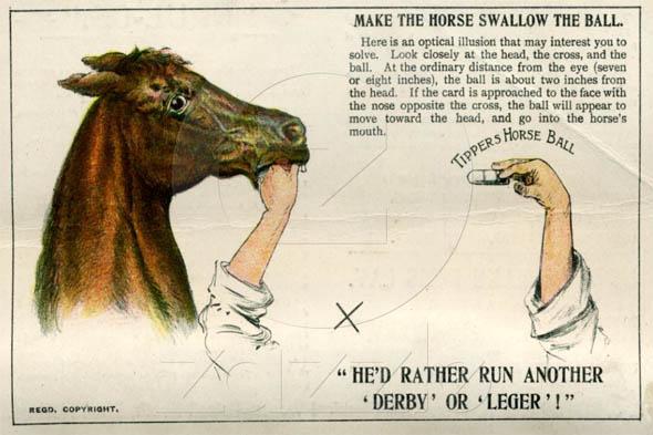 horse pill optical illusion