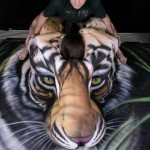 Bodypaint Tiger Optical Illusion by Craig Tracy 5