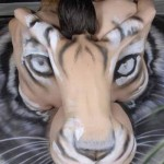 Bodypaint Tiger Optical Illusion by Craig Tracy 3
