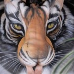 Bodypaint Tiger Optical Illusion by Craig Tracy 4