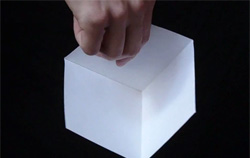 Die Hand Optical Illusion Video