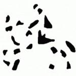 rider_optical_illusion