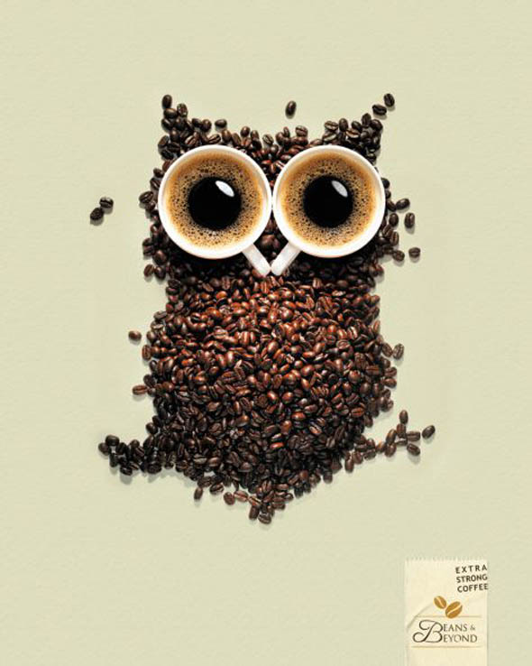 Coffee Owl Billboard
