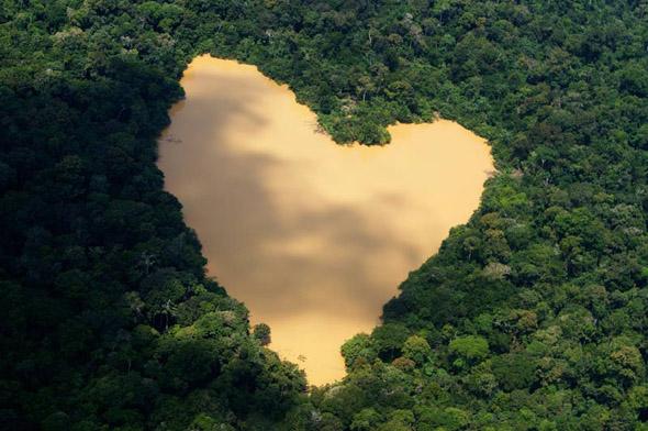 Amazonian Heart Illusion