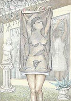 Bath Towel Illusion