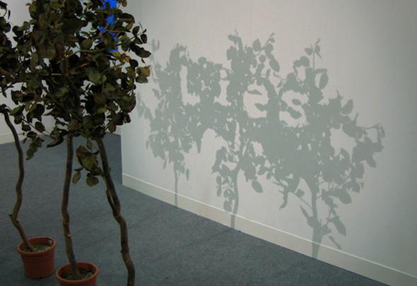 Flora Art Optical Illusion