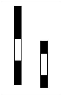Bar Size Optical Illusion