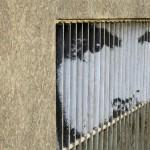 Mannheim Street Art