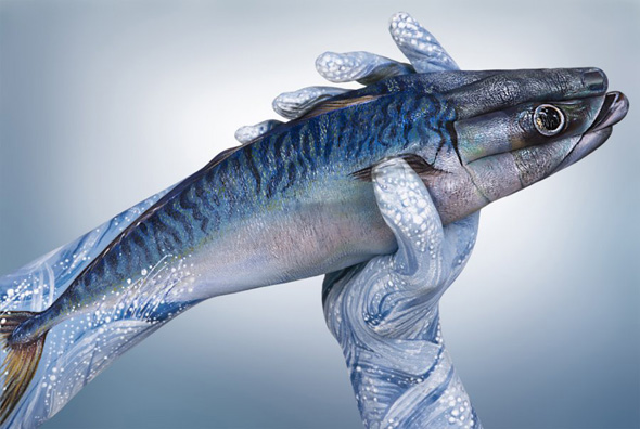 Guido Daniele Handimals 2