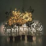 Fred Eerdekens - Tree1b