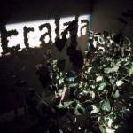 Fred Eerdekens - Tree2