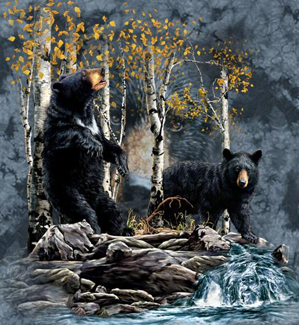 Find The Hidden Black Bears!