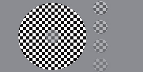 schizoprenia optical illusion test 3