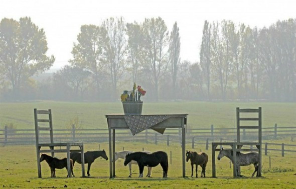 Giant_Tables_Small_Horses