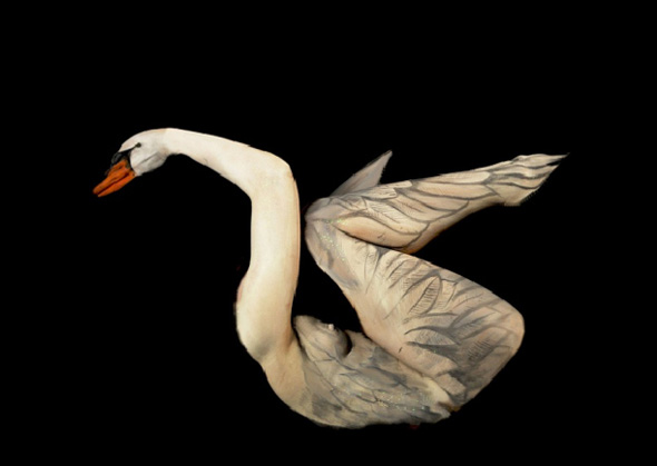 Swan Body Painting