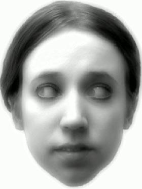 Jenkins Animated Face Illusion