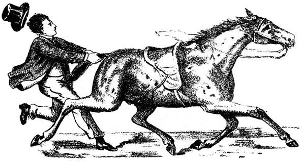 The Invisible Jockey