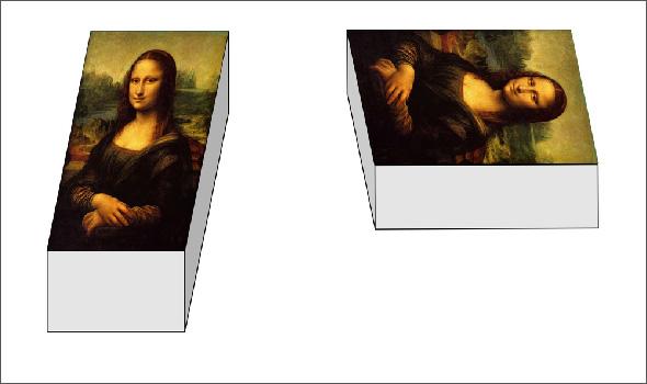 Shepards Mona Lisa Illusion