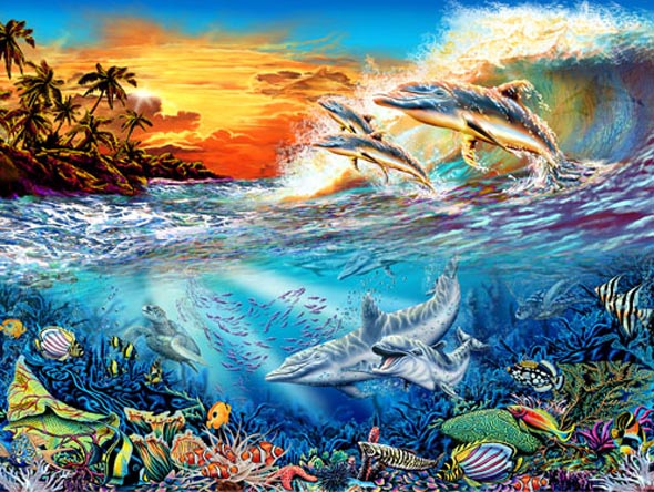 Can You Find 19 Hidden Dolphins?