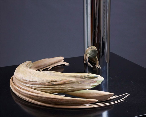 Anamorphic sculptures by J. Hurwitz