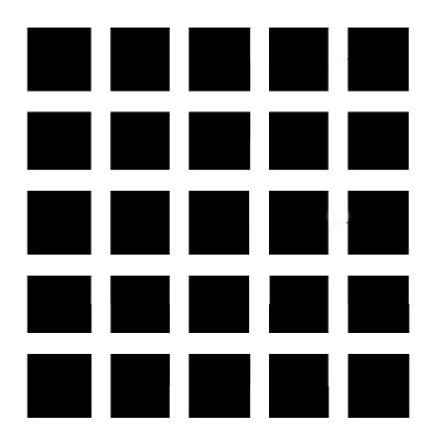 Grid Illusion
