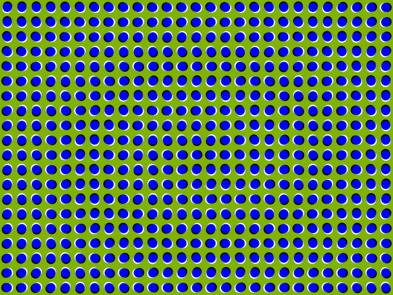 Brilliant Color Adapting Optical Illusion