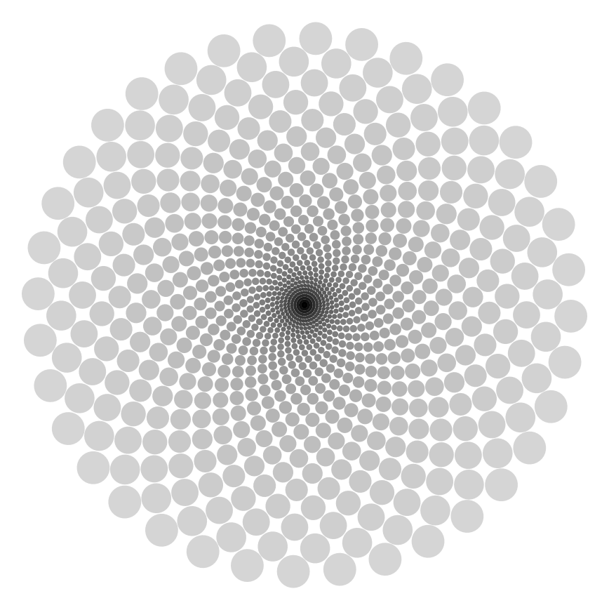 Black Void optical Illusion