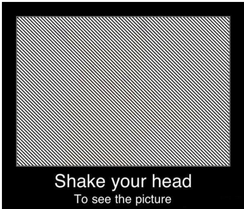 Shake Your Head to Reveal the Optical Illusion