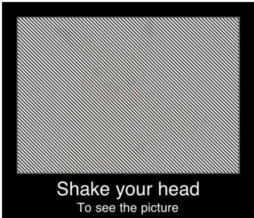 Shake Your Head Optical Illusion