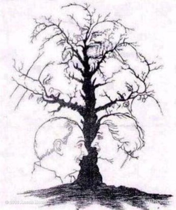 Faces in the Tree Optical Illusion