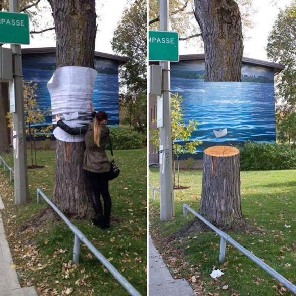 Invisible Tree Optical Illusion