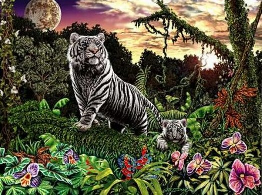 Find the Tigers Optical Illusion