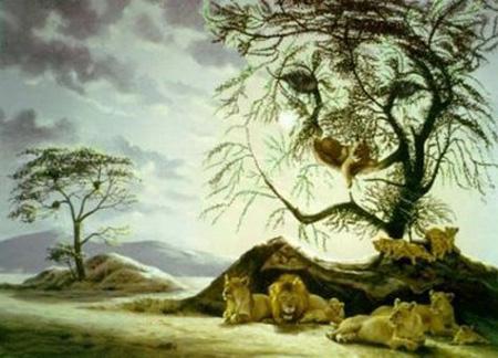 Hidden Lions Optical Illusion