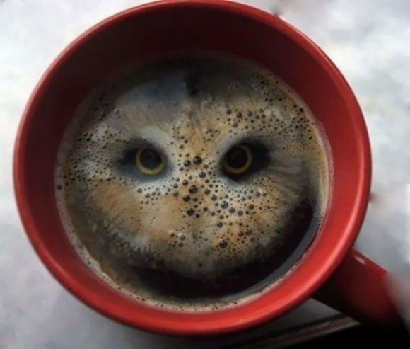 coffee cup with eyes optical illusion