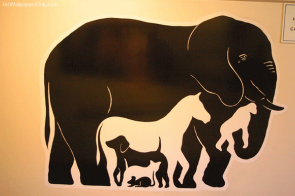 The Elephant on the Wall Optical Illusion