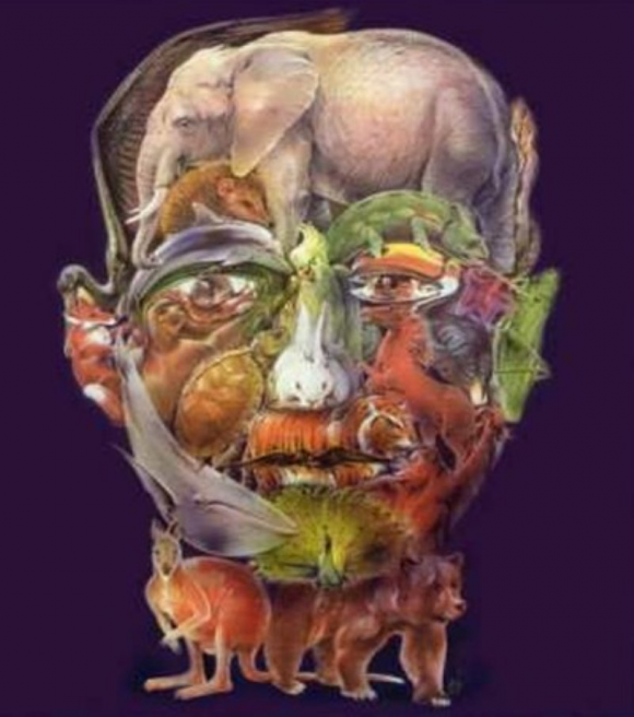 Animals and Man Optical Illusion