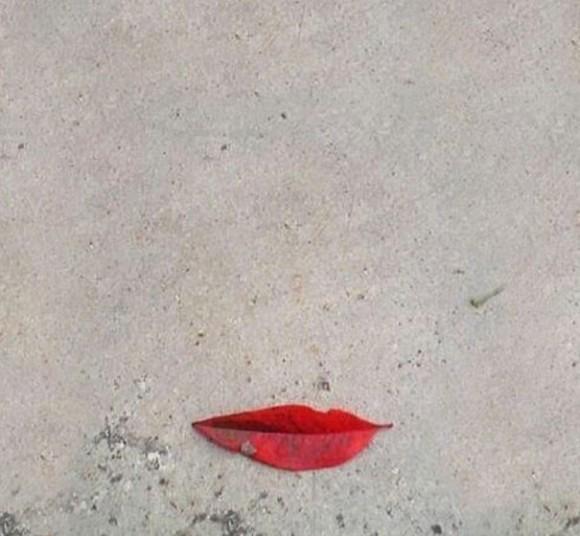 the smiling leaf optical illusion
