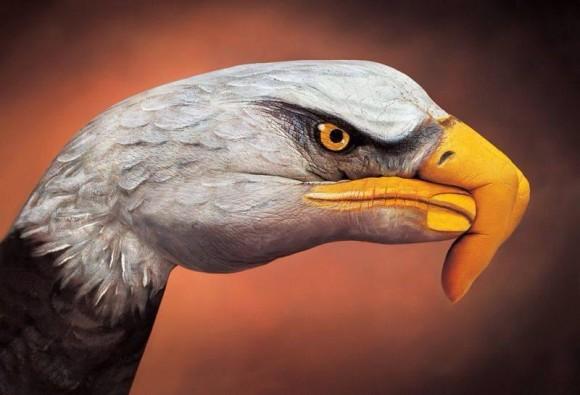 Eagle Hand Optical Illusion